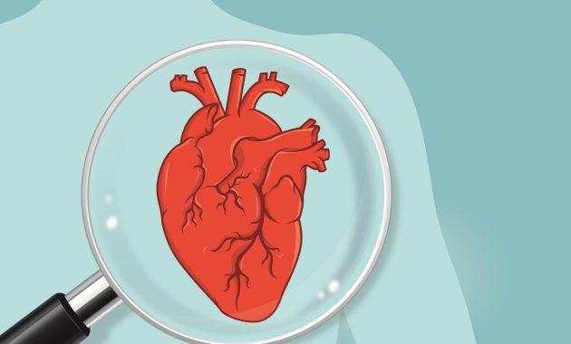 coeur cardio maladie santé