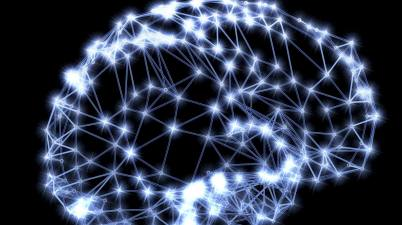 brain cerveau neurone