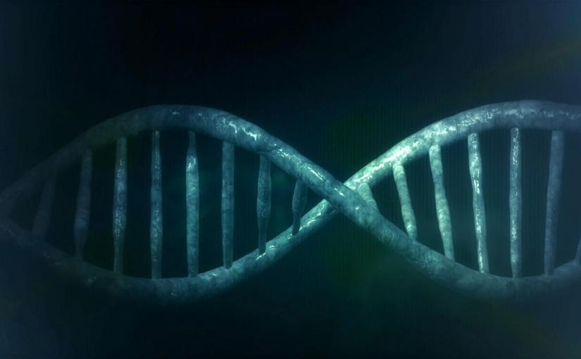 L'évolution de nos gènes : Les origines de l'Homme