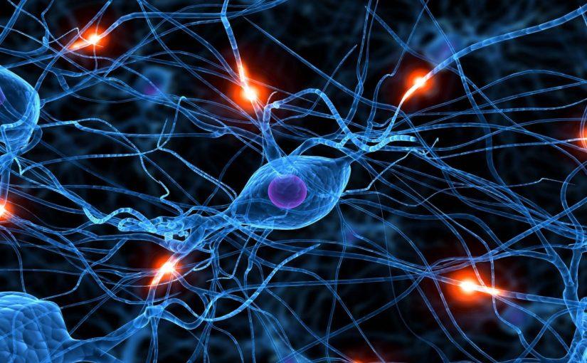 Roger Lenglet : Nanotoxiques et Menace sur nos neurones