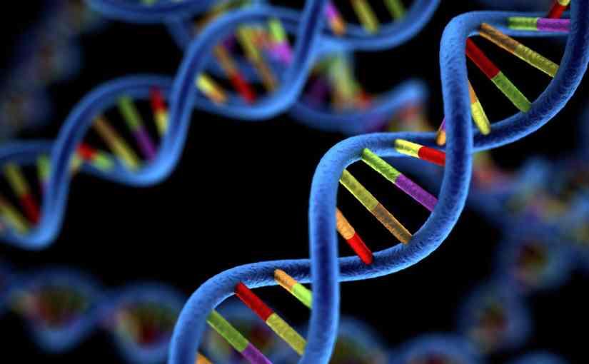 Biologie 2.0 – Faire évoluer l'évolution