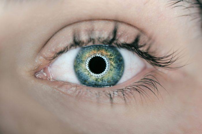 iris oeil biométrie