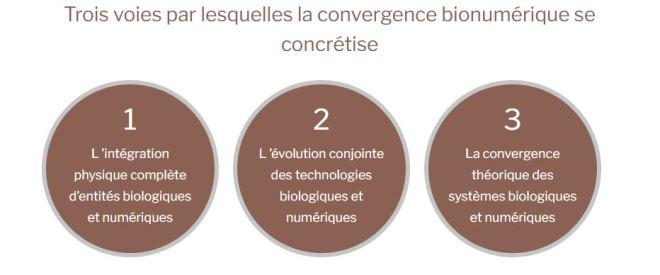 3 voies convergence bionumérique