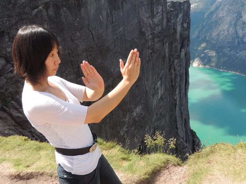 WingChun is one fo the Kung Fu styles, which Bruce Lee originally trained. WingChun was popularized through the IP Man Movies