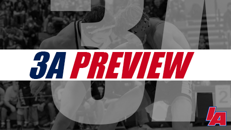 3a-preview