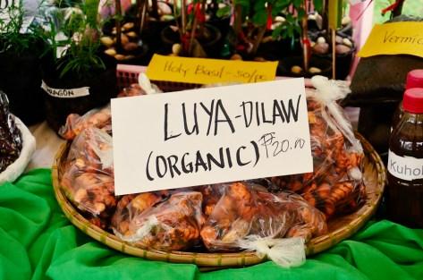 ibaan municipal agriculture office organic products mayor danny toreja ethel joy caiga salazar 8