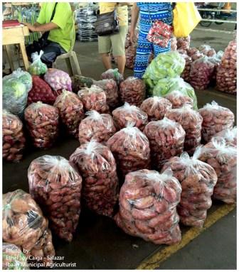ibaan municipal agriculture ethel joy caiga salazar myla soriano mayor danny toreja ibaan batangas food center 16