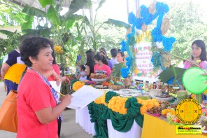 sabang elementary school food festival july 25 2016 ibaan batangas 31