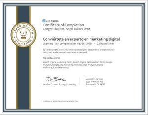 Experto en marketing digital Ibague Linkedin Learning