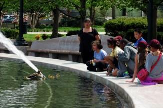 School children admiring ducks at National Gallery Sculpture Garden pool