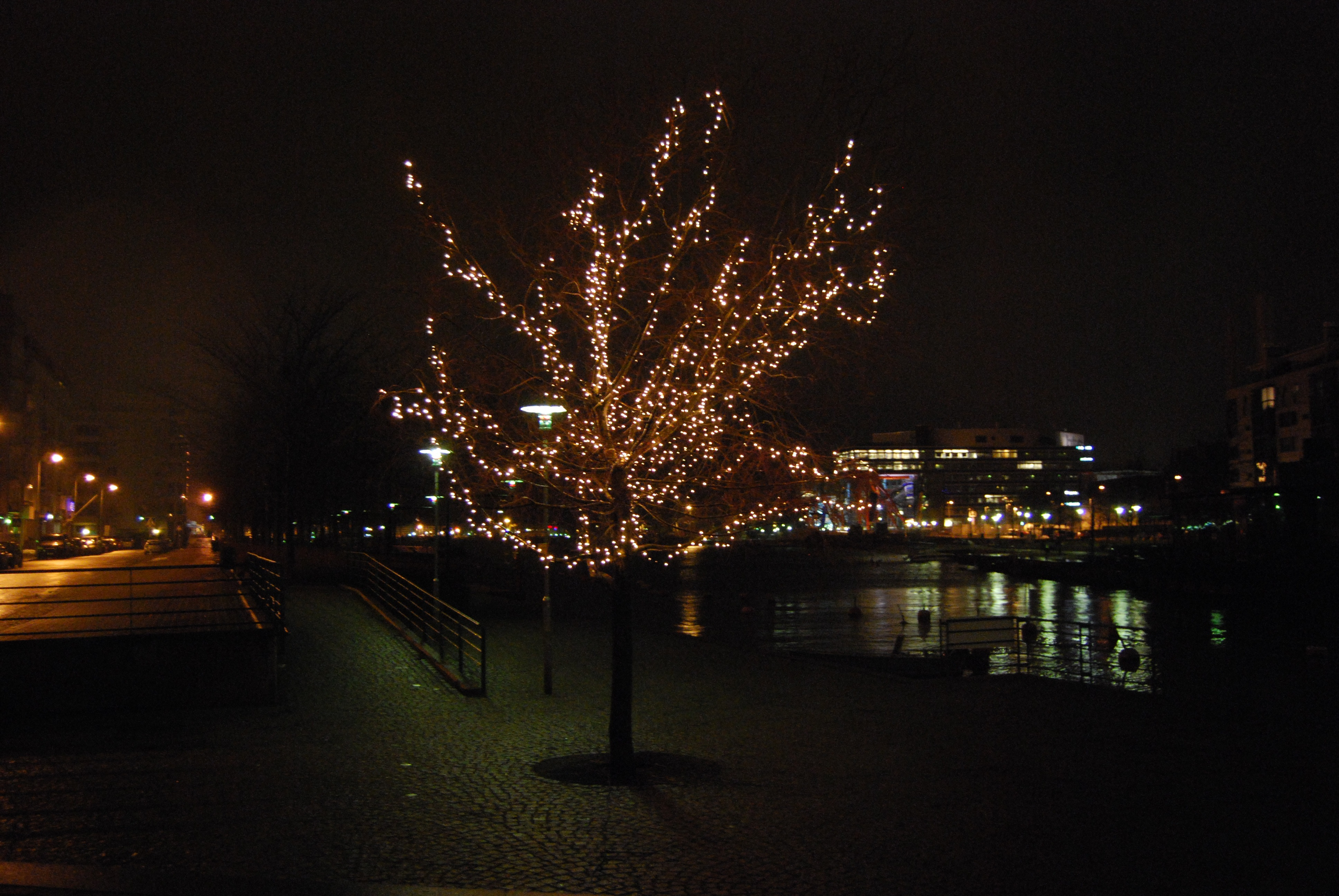 lonelinessandthetree