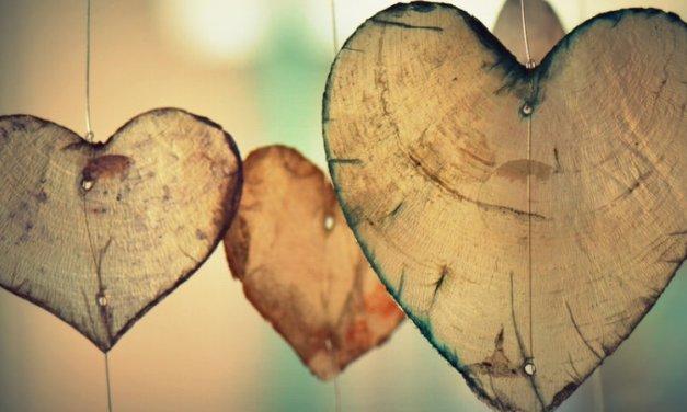 La Vida Amorosa