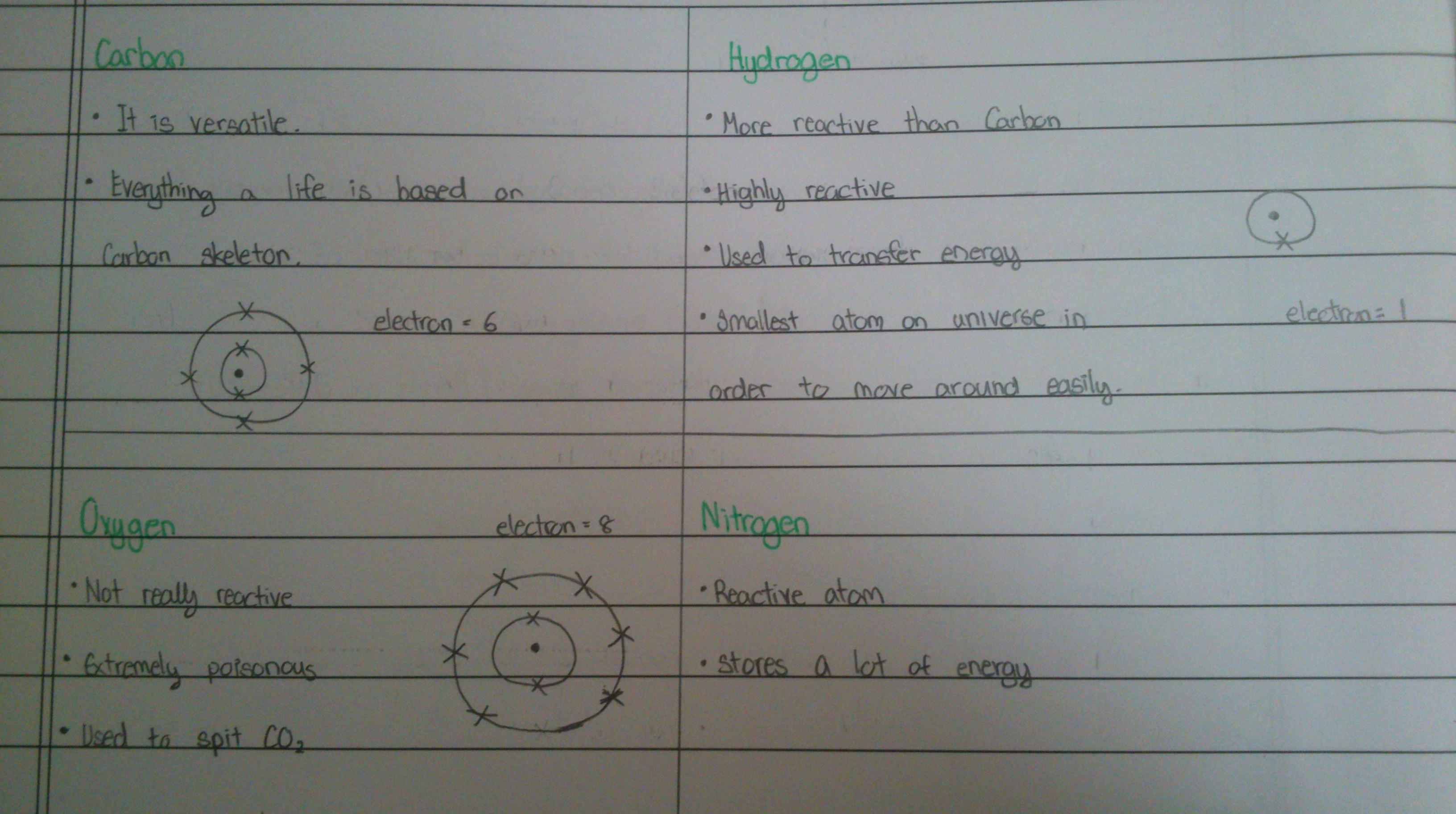 Angelina S Ib Biology Blog
