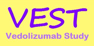 VEST project logo