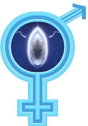 Signo que representa la unión de hombre y mujer