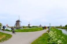 Kinderdijk 06