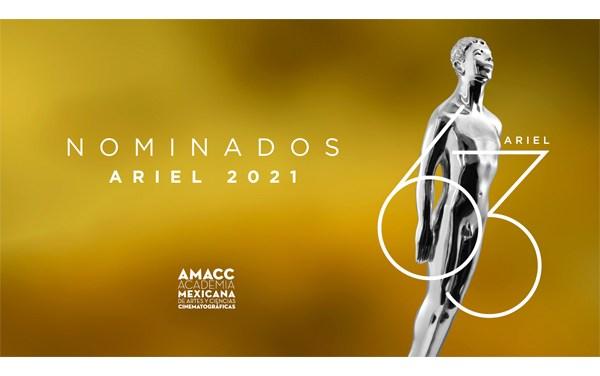 """""""Sin señas particulares"""" encabeza nominaciones a Premios Ariel"""