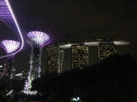 Marina Bay Sands hotel light up beautifully at night