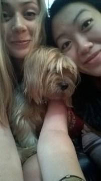 Adelle's dog Shiny
