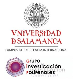Universidad de Salamanca, GIP