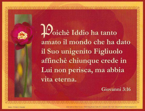 8x10_John_3_16_Italian[1]