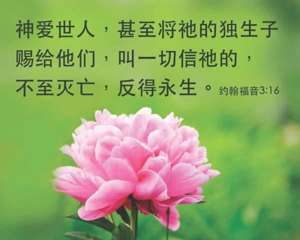 Chinese-John-316[1]