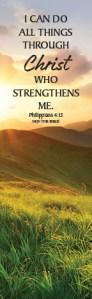 Phil413_Bookmark 2019 MountainMeadow