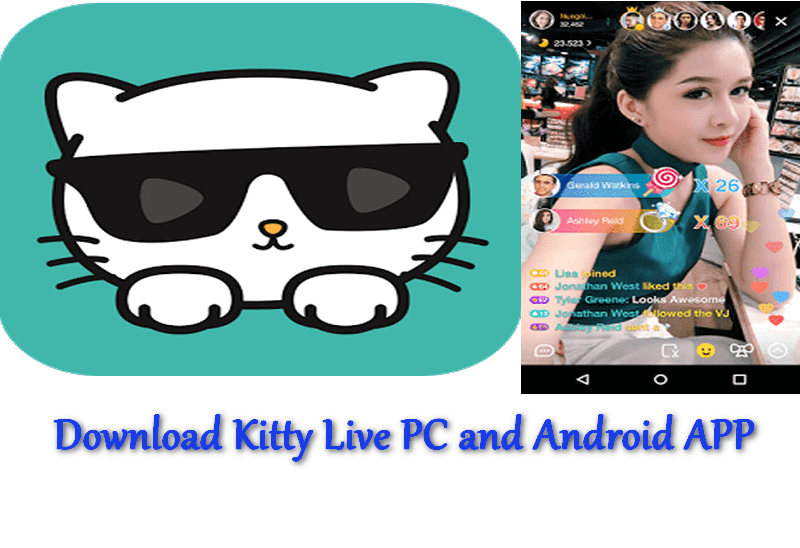 kitty live pc