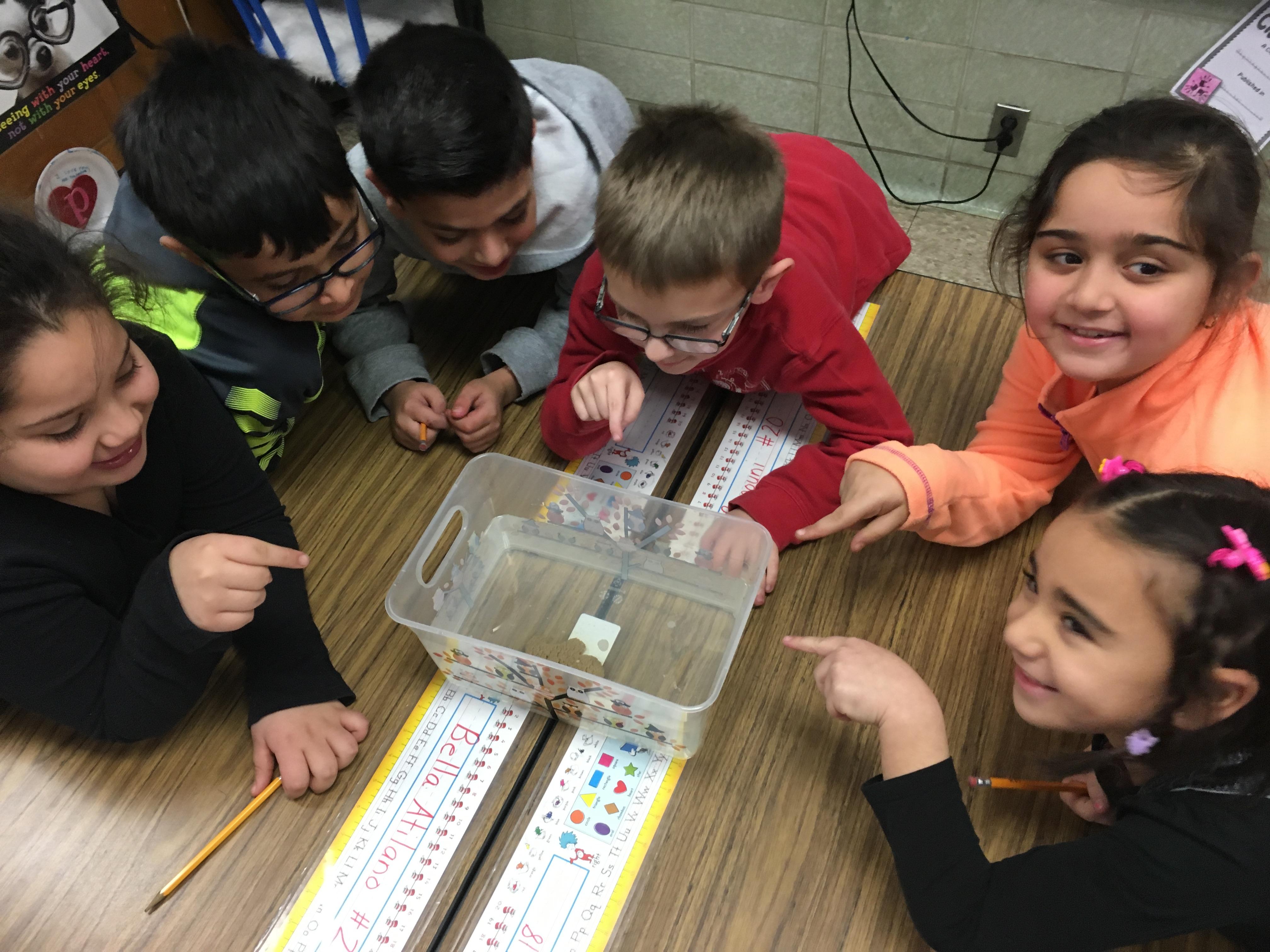 2nd Grade Students Discover C E R Claim Evidence