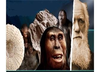 Evrimciler neleri düşünmeden bu teoriyi savunurlar?