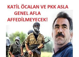 Bu ülkede arkadan vuran PKK'yı ve Öcalan'ı kim affetme cesareti gösterebilir?