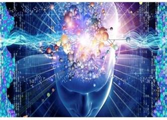 Her insan beyninin içindeki 1 mm. küplük alanda yaşar…