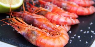 Cocina del mar Tártaro