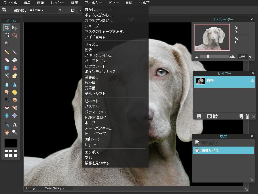 Pixlr Editor ピクセラエディタ フィルター機能