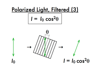 1-2-polarization-a-018