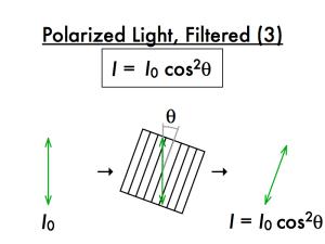 1-2-polarization-a-018