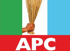 Our party now a 'nest of lawlessness', APC Deputy National Chairman cries out
