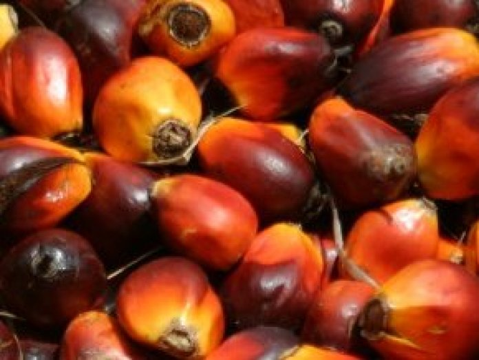 Effect of COVID-19 on Palm oil production, the grassroots experience in Nigeria