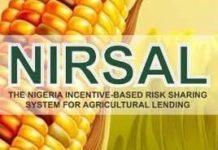 Wet Farming Season: 475 female cassava farmers, 2,872 farmers empowered by NIRSAL