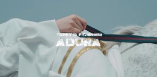 "Video] Terry G - ""Adura"" ft. Skiibii « tooXclusive"
