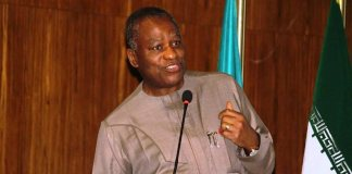 What I did to defeat COVID-19 — Foreign Affairs Minister,