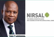 Wet Farming Season: 475 female cassava farmers, 2,872 farmers empowered by NIRSAL