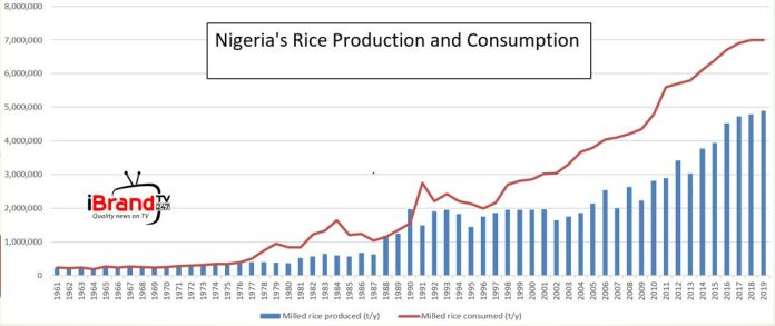 Nigerians patronise local rice as price of foreign rice soar further