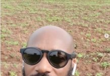 2Baba showcases 'Innobia Farms' in Benue State