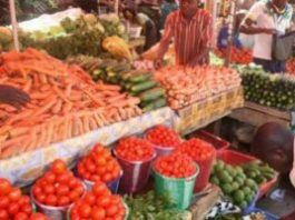AgroNigeria boss hinges economic revitalisation on improved food system