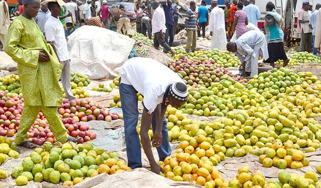 Heatwave: Fruit sellers make brisk business in Nigeria