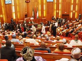 Insecurity: Deploy more personnel to Sokoto, Lawmaker tells FG