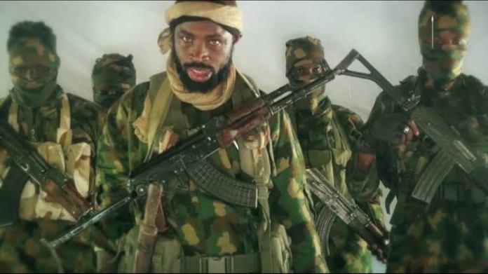 Why We Killed Borno Farmers - Boko Haram