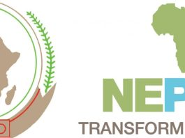 Food Security: Govt. donates land to NEPAD for agricultural purposes