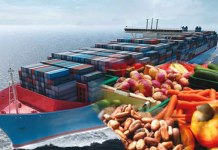agricultural exports i
